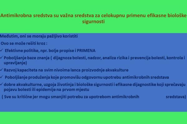 slide9D53DB8D2-82CF-4FF7-DB29-05461570A212.jpg